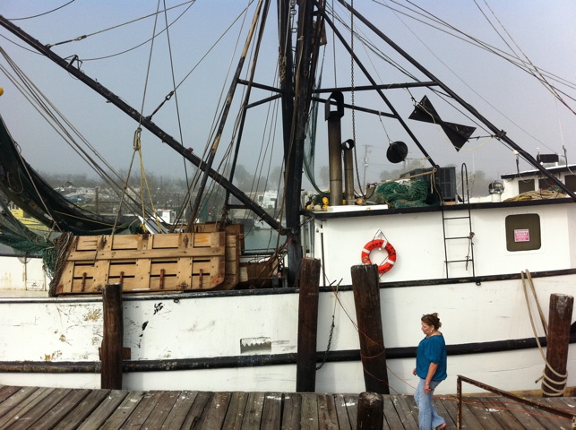 Texas Brown Shrimp in South Padre and Port Isabel (1/6)