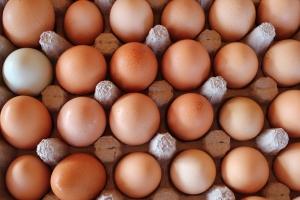 peeler eggs